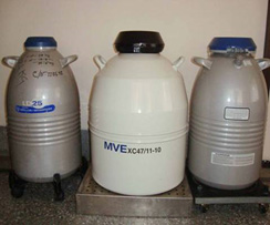 Cryo cans