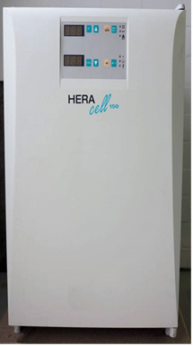HERA Cell Incubator
